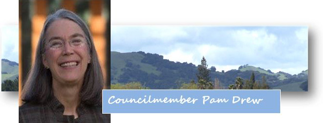 Photo of Councilmember Pam Drew