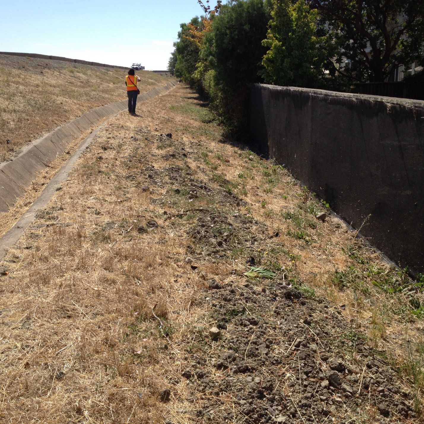 photo of levee drainage