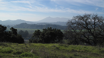 Pacheco Hill Open Space