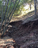 Photo of Miwok Slide
