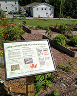 Image of a community garden