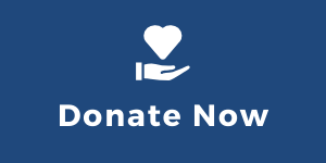 "Web Button with the words ""Donate Now"""
