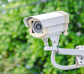 Picture of surveillance camera
