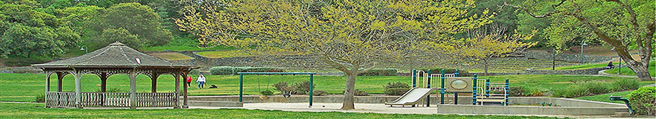 Banner image of park