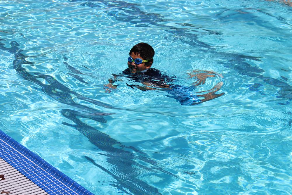 Aquatics program hamilton pool city of novato ca for Hamilton swimming pool san francisco