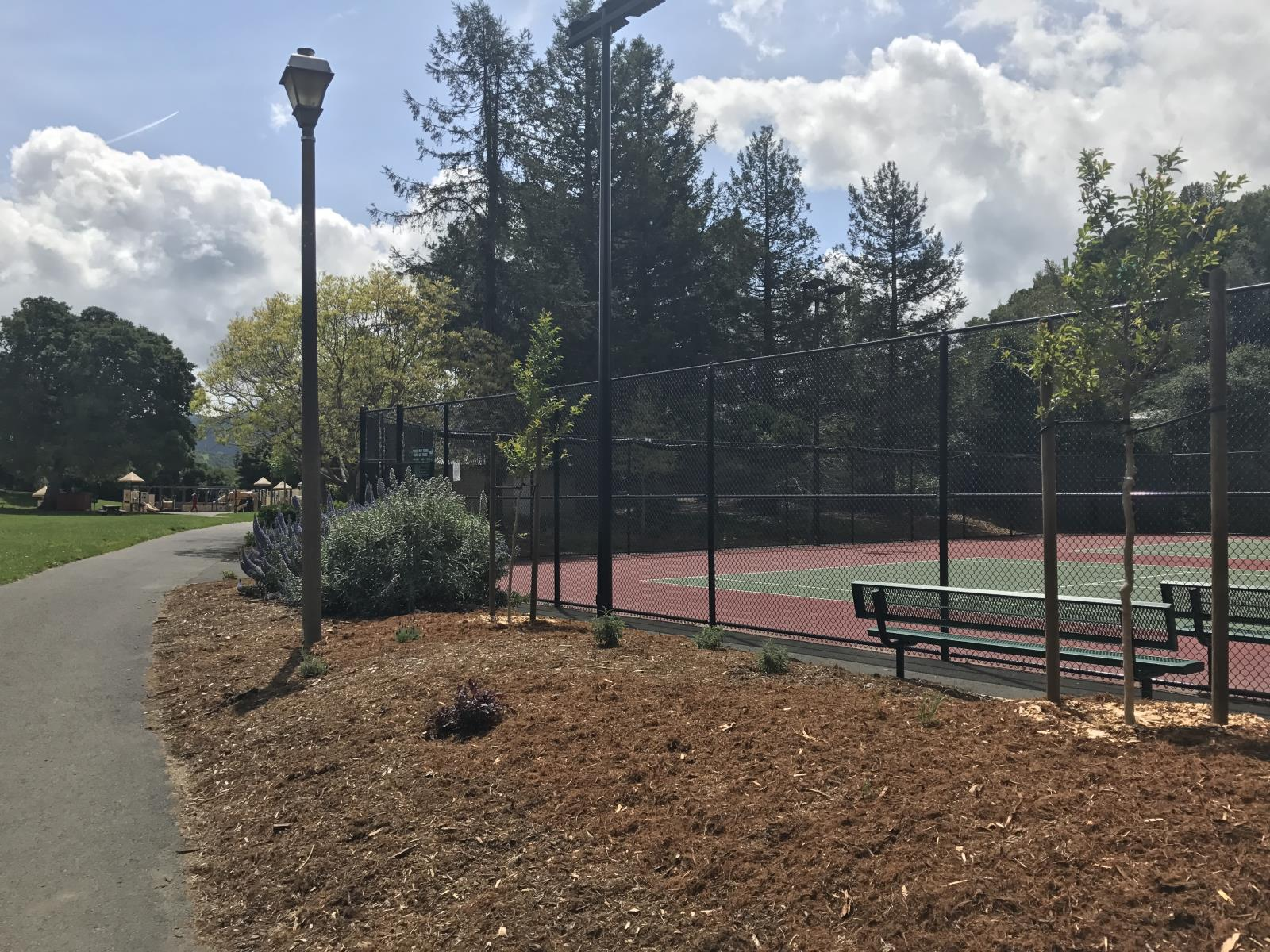 Pioneer Tennis Courts Landscaping