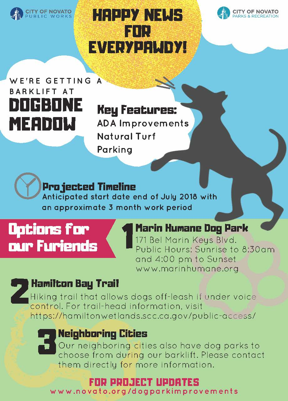 Image of Dogbone Meadow project flyer