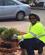Image of Public Works staff planting flowers