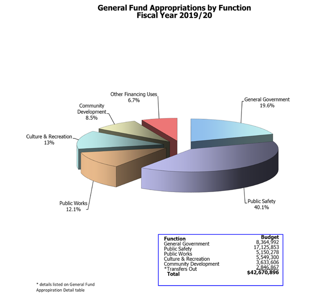 Pie chart of general fund appropriations by function
