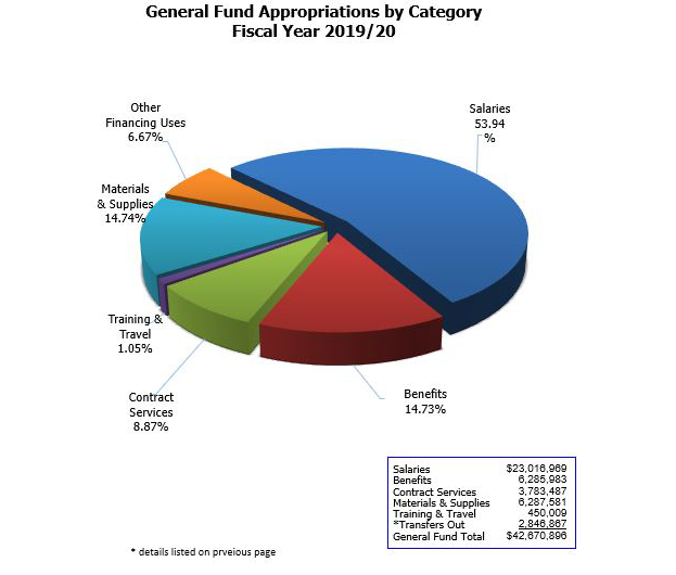 Pie chart of general fund appropriations by category