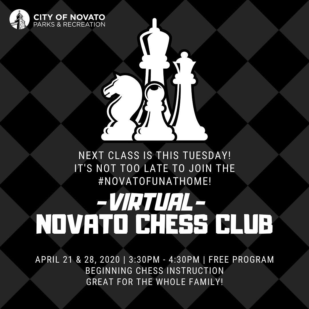 Virtual Chess Club novatofunathome
