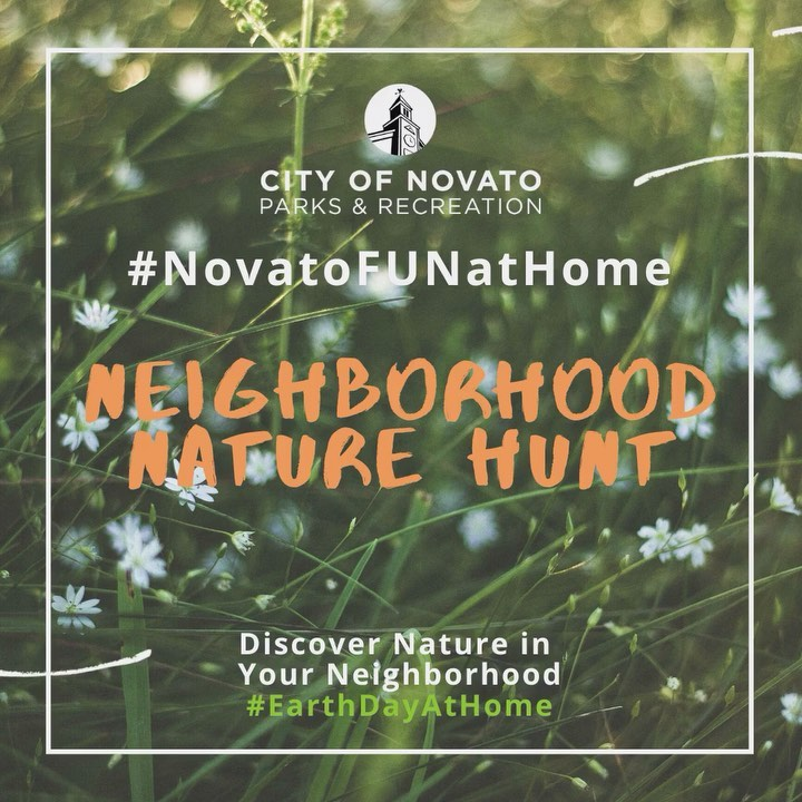 Nature Hunt novatofunathome